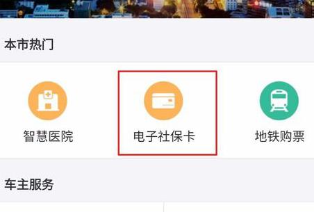 支付宝怎么交农村医保3.png