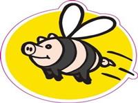 猪猪_副本.jpg