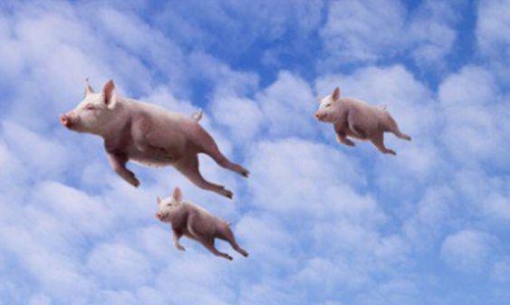 飞猪机票怎么取消改签
